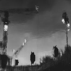 barking_reflections004