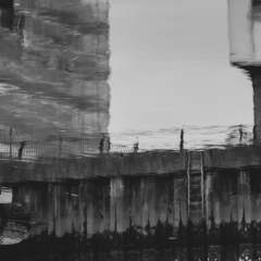 barking_reflections005